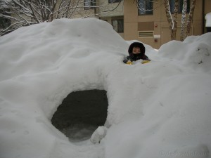 digging the snowcave