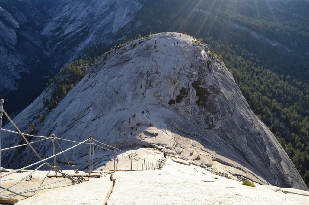 Half dome top cables